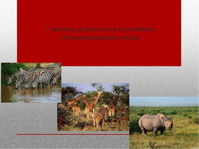 Саванны, редколесья и кустарники субэкваториального пояса