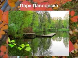 Парк Павловска