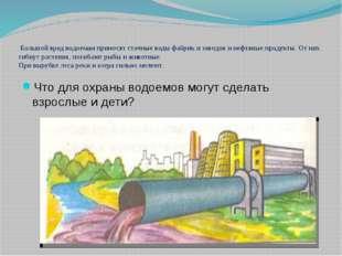 Большой вред водоемам приносят сточные воды фабрик и заводов и нефтяные прод