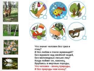Что значит человек без трав и птиц? И без любви к пчеле жужжащей? Без журавля