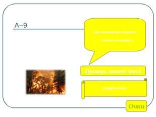 А–9 Как называется наука о лесных пожарах ? Очки Прирология Проверь ответ здесь