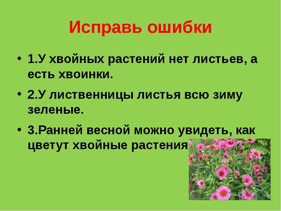 Исправь ошибки 1.У хвойных растений нет листьев, а есть хвоинки. 2.У лиственн...