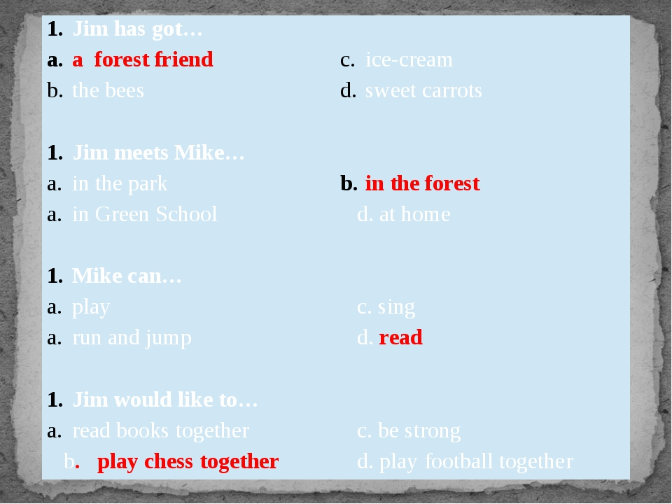 Jim has got… a forest friend ice-cream the bees sweet carrots Jim meets Mike…...