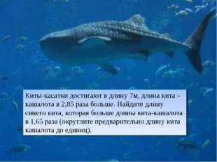 Киты-касатки достигают в длину 7м, длина кита –кашалота в 2,85 раза больше. Н