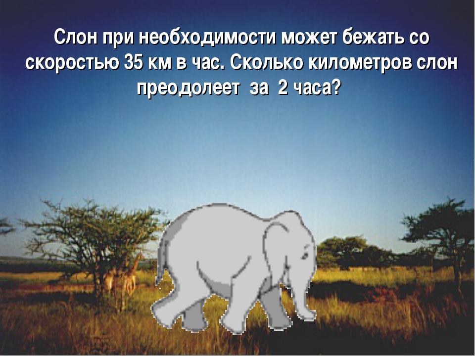 Слон при необходимости может бежать со скоростью 35 км в час. Сколько километ...