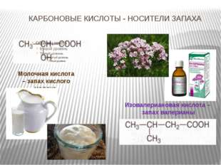 КАРБОНОВЫЕ КИСЛОТЫ - НОСИТЕЛИ ЗАПАХА Молочная кислота – запах кислого молока