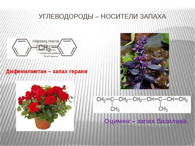 УГЛЕВОДОРОДЫ – НОСИТЕЛИ ЗАПАХА Оцимен – запах базилика Дифенилметан – запах г...