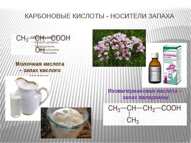 КАРБОНОВЫЕ КИСЛОТЫ - НОСИТЕЛИ ЗАПАХА Молочная кислота – запах кислого молока...