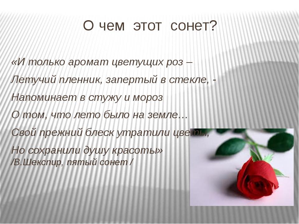 О чем этот сонет? «И только аромат цветущих роз – Летучий пленник, запертый в...