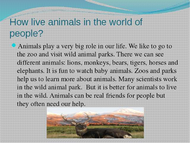 How live animals in the world of people? Animals play a very big role in our...