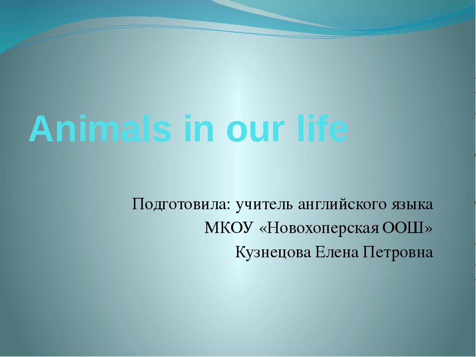 Animals in our life Подготовила: учитель английского языка МКОУ «Новохоперска...