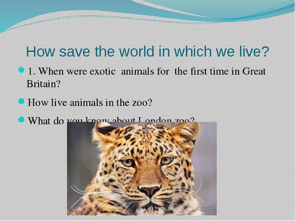 How save the world in which we live? 1. When were exotic animals for the firs...