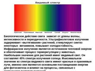 Биологическое действие света зависит от длины волны, интенсивности и периодич