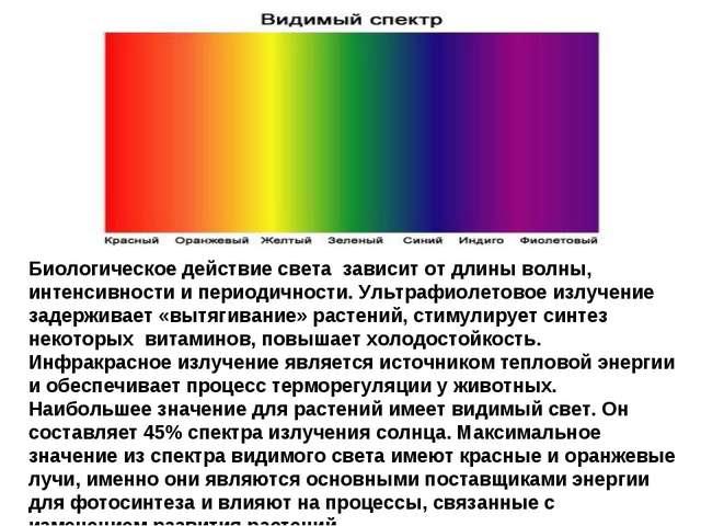 Биологическое действие света зависит от длины волны, интенсивности и периодич...