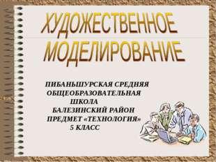 ПИБАНЬШУРСКАЯ СРЕДНЯЯ ОБЩЕОБРАЗОВАТЕЛЬНАЯ ШКОЛА БАЛЕЗИНСКИЙ РАЙОН ПРЕДМЕТ «ТЕ