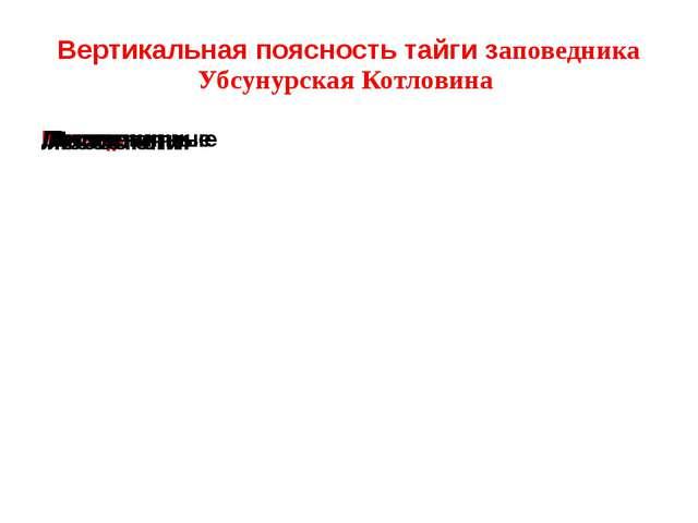 Вертикальная поясность тайги заповедника Убсунурская Котловина