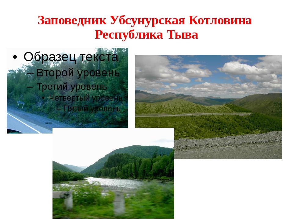 Заповедник Убсунурская Котловина Республика Тыва