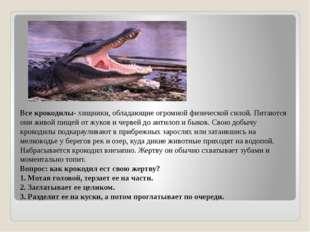 Все крокодилы- хищники, обладающие огромной физической силой. Питаются они жи