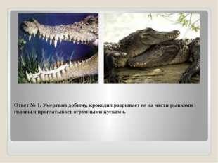 Ответ № 1. Умертвив добычу, крокодил разрывает ее на части рывками головы и п