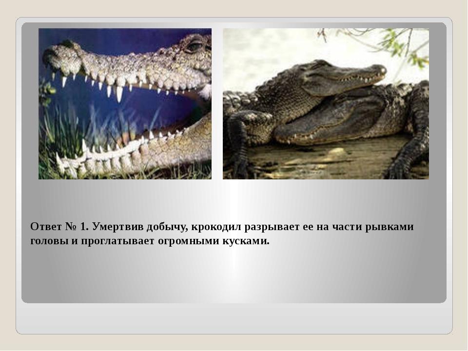 Ответ № 1. Умертвив добычу, крокодил разрывает ее на части рывками головы и п...