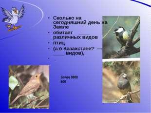 Сколько на сегодняшний день на Земле обитает ____ различных видов птиц (а в