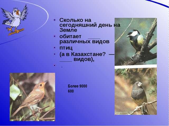 Сколько на сегодняшний день на Земле обитает ____ различных видов птиц (а в...