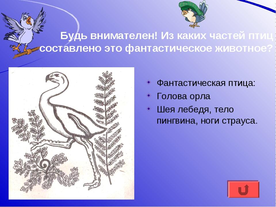 Будь внимателен! Из каких частей птиц составлено это фантастическое животное?...