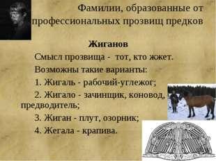 Фамилии, образованные от профессиональных прозвищ предков Жиганов Смысл про