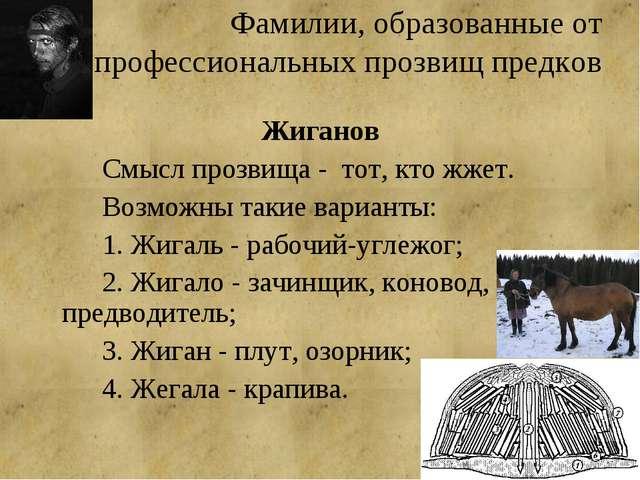 Фамилии, образованные от профессиональных прозвищ предков Жиганов Смысл про...