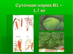 Суточная норма В1 – 1,7 мг