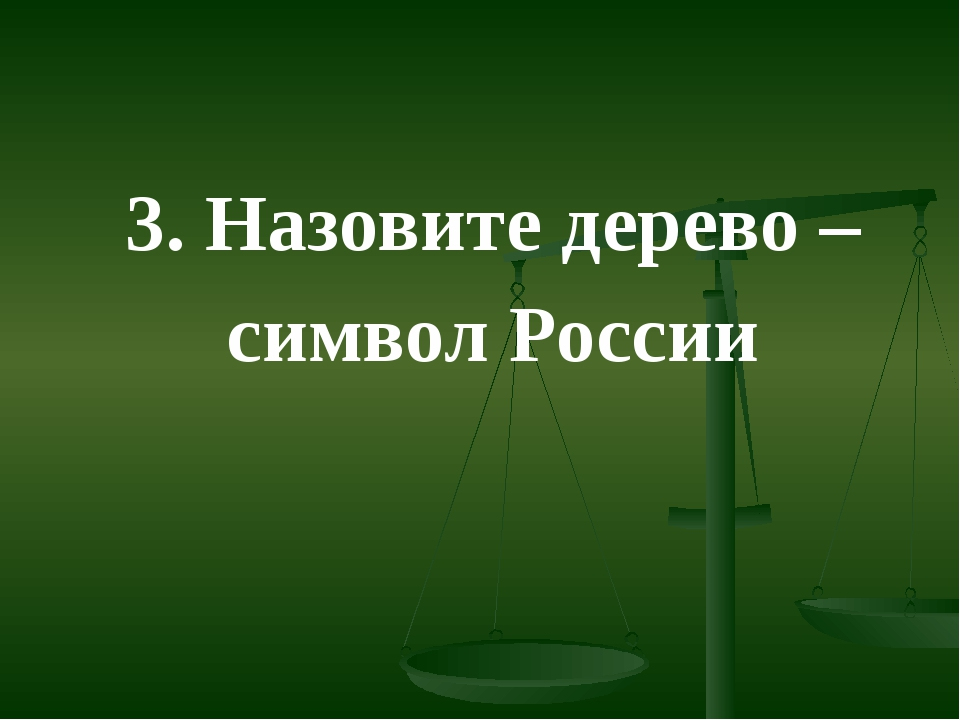 3. Назовите дерево – символ России