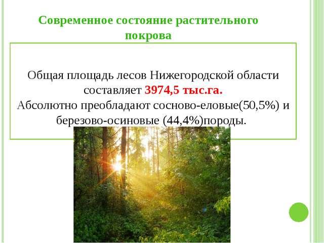 Современное состояние растительного покрова Общая площадь лесов Нижегородской...