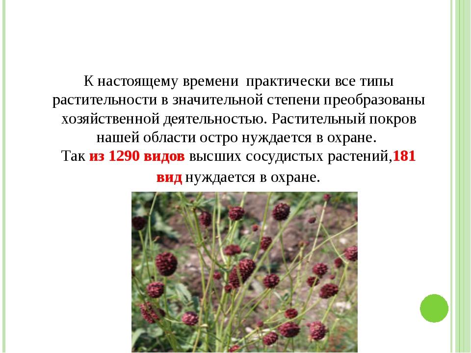 К настоящему времени практически все типы растительности в значительной степ...