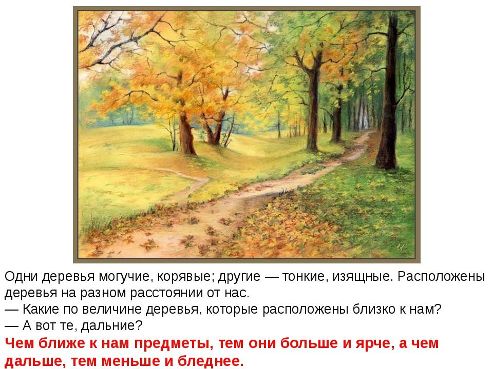 Одни деревья могучие, корявые; другие — тонкие, изящные. Расположены деревья...