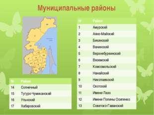 Муниципальные районы № Район 1 Амурский 2 Аяно-Майский 3 Бикинский 4 Ванински