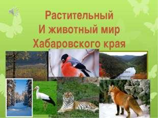 Растительный И животный мир Хабаровского края