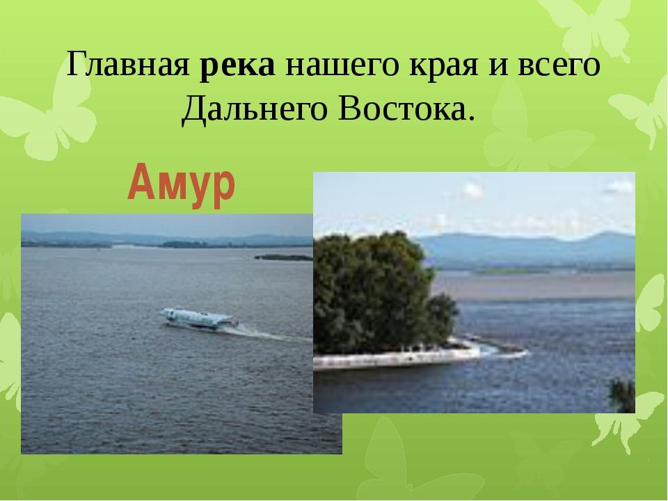Главная река нашего края и всего Дальнего Востока. Амур