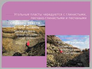 Угольные пласты чередуются с глинистыми, песчано-глинистыми и песчаными