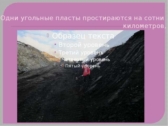 Одни угольные пласты простираются на сотни километров,