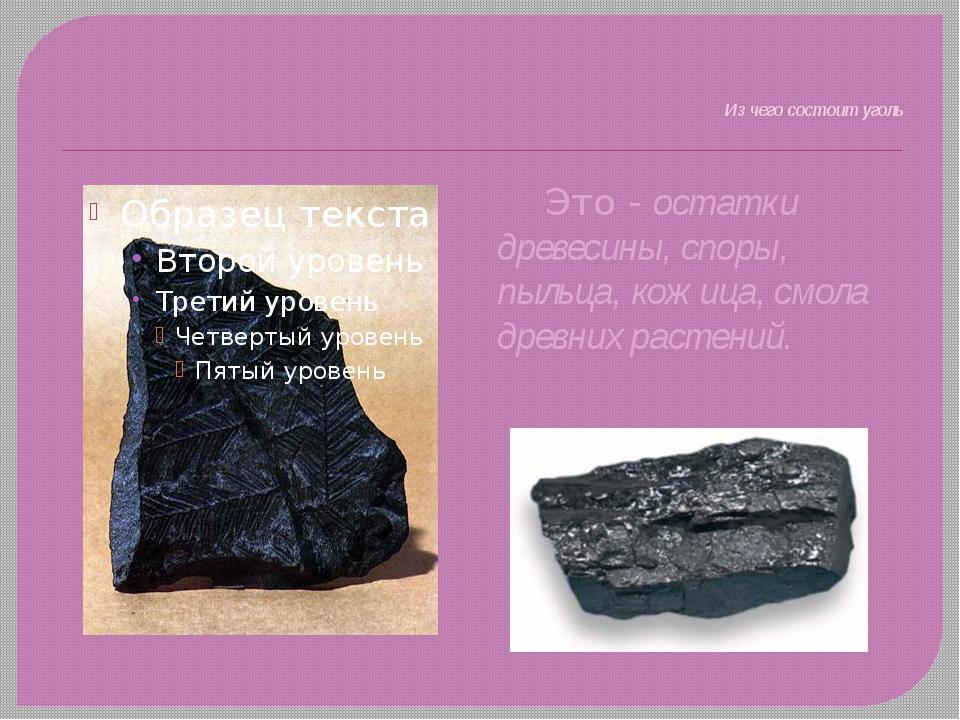 Из чего состоит уголь Это - остатки древесины, споры, пыльца, кожица, смола...