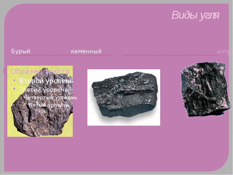 Виды угля Бурый каменный антрацит
