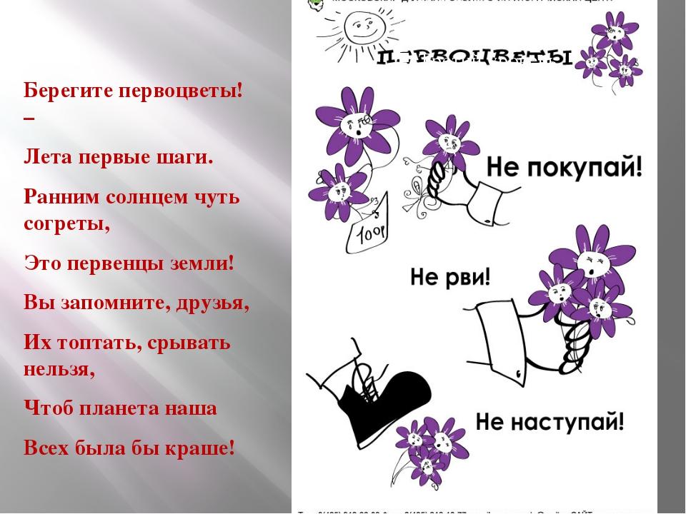 Стихи с днем рождения тете маленькие стихи