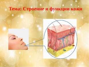 Тема: Строение и функции кожи