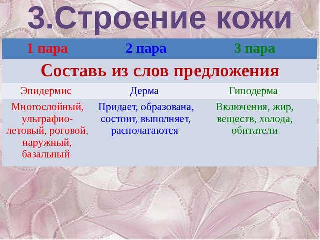 3.Строение кожи 1 пара 2 пара 3 пара Составь из слов предложения Эпидермис Де...