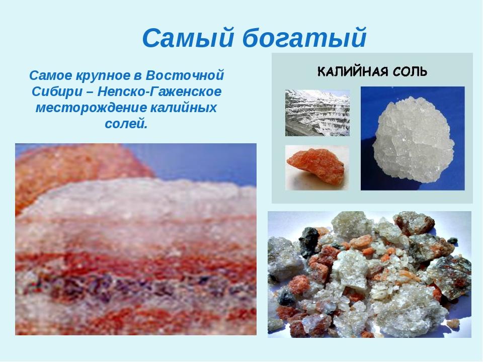 Самый богатый Самое крупное в Восточной Сибири – Непско-Гаженское месторожден...