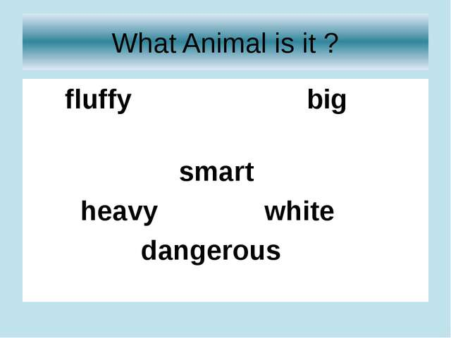 What Animal is it ? fluffy big smart heavy white dangerous