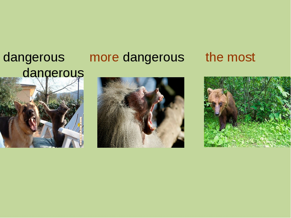 dangerous more dangerous the most dangerous