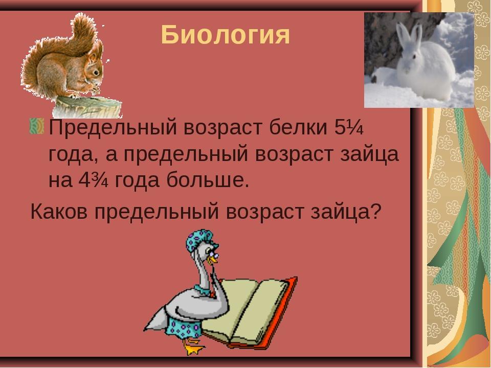 Биология Предельный возраст белки 5¼ года, а предельный возраст зайца на 4¾ г...