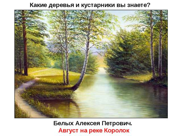 Какие деревья и кустарники вы знаете? Белых Алексея Петрович. Август на реке...