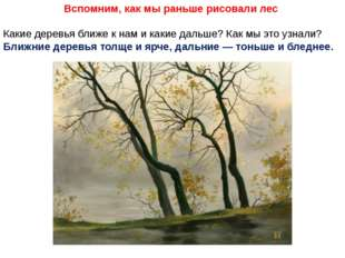Вспомним, как мы раньше рисовали лес Какие деревья ближе к нам и какие дальше